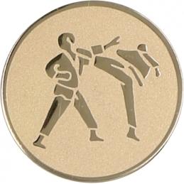 Emblemă Medalie Arte Marțiale
