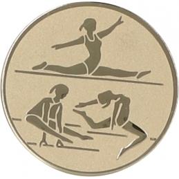 Emblemă Medalie Gimnastică
